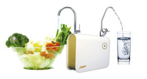 Home Appliance 0.6 Mg/L Ozone Drinking Water Purifier for Fruit Vegetables pictures & photos