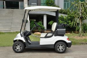 4 Wheels Baterry Power Club Cart Golf Buggy pictures & photos