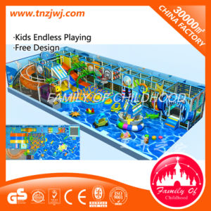 Fashion Design Naughty Fort Kids Indoor Playground Equipment pictures & photos