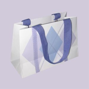 Printed Paper Shopping Gift Bags pictures & photos
