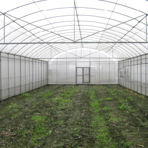 2016 Hot Film Greenhouse for Vegetable/Fruits/Tomato/Cucumer pictures & photos
