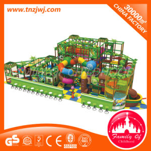 Commercial Amusement Naughty Castle Indoor Playground Equipment pictures & photos