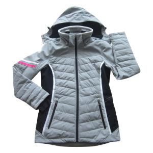 Women′s Water and Wind Proof Sport Outwear (HS16010)