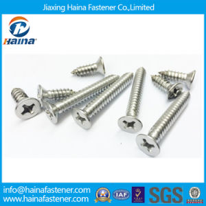 Stainless Steel Countersunk Head Micro Nano Screws pictures & photos