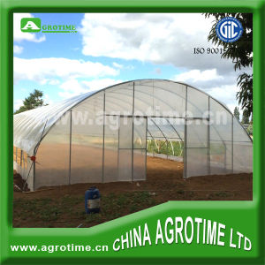 Hydroponic Greenhouse for Vegetable (CMC3810)