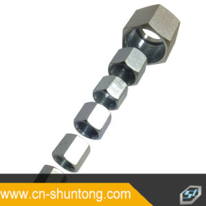 Hydraulic Fitting\Hose Fitting\Retaining Nuts