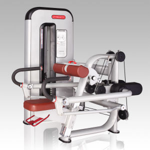 Triceps Curl Gym Machine/Fitness Equipment/Sports Equipment pictures & photos