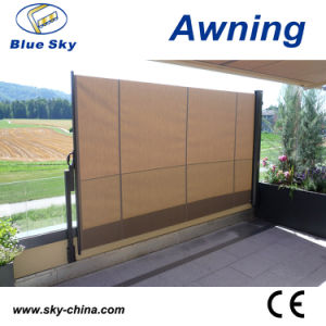 Cheap Outdoor Side Folding Screen Awnings pictures & photos