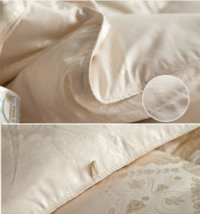 Silk Fabric Cover White Goose Down Quilt for Home pictures & photos