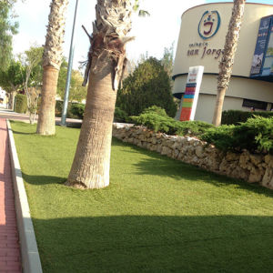 U Shape Artificial Grass for Landscaping pictures & photos