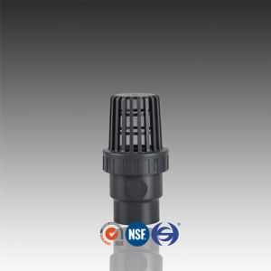 DIN Standard PVC Bottom Valve with Single Union pictures & photos