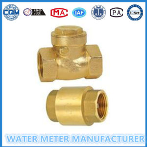 Brass Swing Check Valve for Water Meter pictures & photos