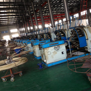 CE Certificate Steel Wire Braiding Machine pictures & photos