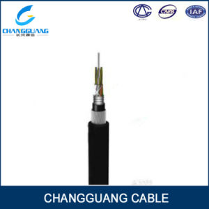 GYTA33 Double Sheath Armored 24 Core Fiber Optic Cable