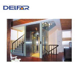 320kg and 400kg Capacity Home Elevator pictures & photos