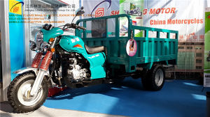 3 Wheel Motorcycle, China New Style Tricycle, Cargo Tricycle, Gasoline Trike, Tuk Tuk, (SY200ZH-B5) pictures & photos