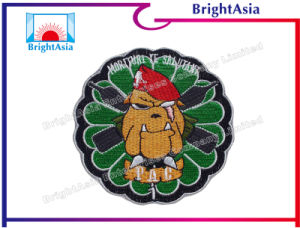 Fashion Color Embroidery Patch for Clothing Decoration (BYH-10151) pictures & photos