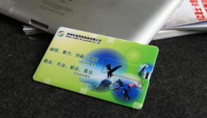 Promotional 8GB Name Card Flash Drive USB pictures & photos