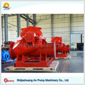 Centrifugal Large Capacity Brass Stainless Steel Material Sea Water Pump pictures & photos