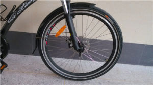 26inch 36V 250W Electric Mountain Bicycle pictures & photos