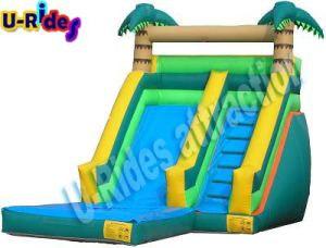 Single Water Slide with Pool pictures & photos