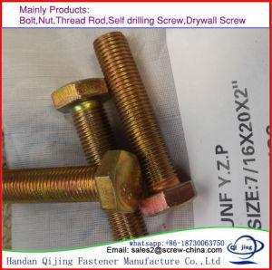Hot DIP Galvanized M6 M8 M10 M12 Grade8.8 Hex Bolt pictures & photos