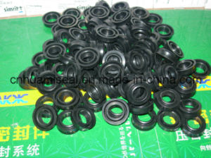 Oil Seal X-Ring pictures & photos