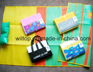 Foldable Printed Plastic Beach Mats (TY009) pictures & photos