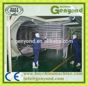 Top Quality Automatic Freeze Drying Machine pictures & photos