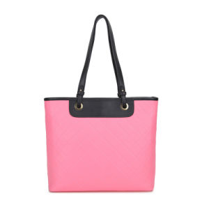 Fashion Ladies Handbag Js-8085