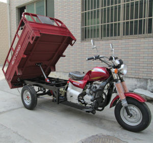 300cc Auto Hydraulic Lifting Gas Three Wheel Cargo Motorcycle pictures & photos