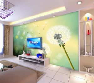 Eco Solvent Customized Wallpaper pictures & photos