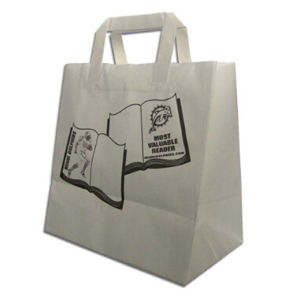 Good Design Eco-Friendly Paper Bag pictures & photos
