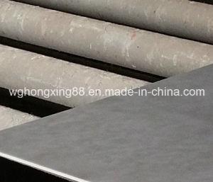 Galvanized Steel Sheet / Galvanized Steel Plate pictures & photos