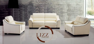 Austria Hot Sale Living Room Furniture 321 Leather Sofa pictures & photos