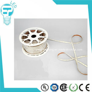 High Quality High Voltage Double Row 2835 LED Strip Light pictures & photos