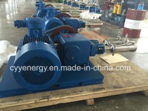 Large Flow and Medium Pressure LNG Liquid Oxygen Nitrogen Argon Carbon Dioxide Piston Pump pictures & photos