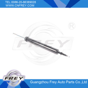 Rear Shock Absorber for X1 E84 OEM No. 33526855243 pictures & photos