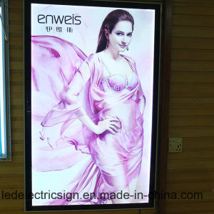 Professional Advertising Aluminum Frame LED Light Box pictures & photos
