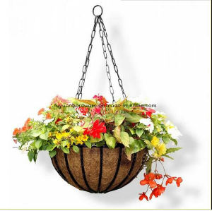 Metal Flower Hanging Basket with Coco Liner pictures & photos