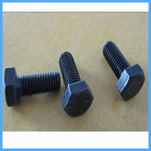Factory Price Hex Bolt with Hex Nut with Washer pictures & photos