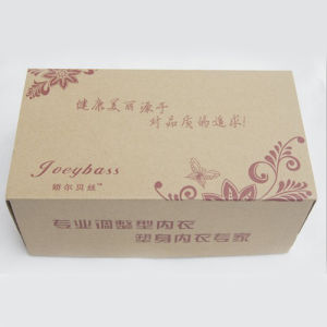 Corrugated Paper Boxes Fk-217 pictures & photos