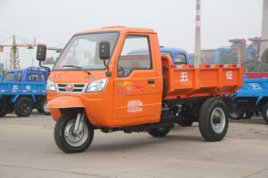 Chinese Cargo Diesel Motorized 3-Wheel Tricycle with Cabin pictures & photos