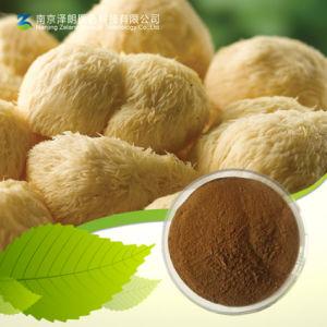 Hericium Polysaccharide / Hericium Erinaceus Extract pictures & photos