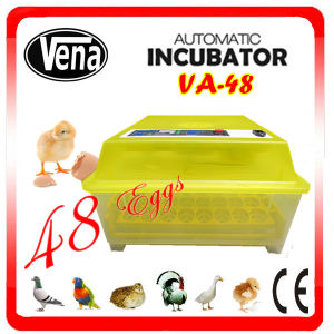 2014 Fully Automatic Chicken Mini Egg Incubator Va-48 pictures & photos