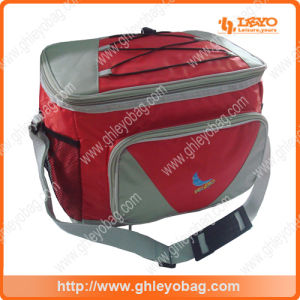 Fashion Insulated Cooler Bag for Outdoor Travel, Picnic, Fitness