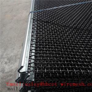 High Quality Crimped Steel Wire Mesh pictures & photos
