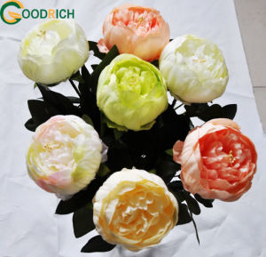 New Design Peony Artificial Flower for Decoration pictures & photos