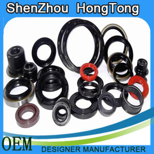 Full Range of Styles Framework Oil Seal pictures & photos