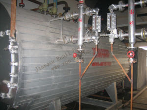 10t Gas-Fired Hot Water Steam Boiler pictures & photos